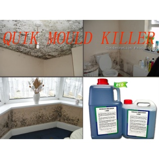 Quikill Mould killer