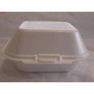 Foam Food Container